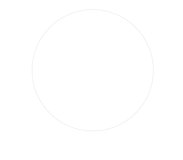 bigcircle2